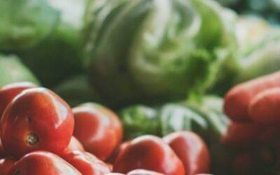Tarmfloran och kostens påverkan på IBS