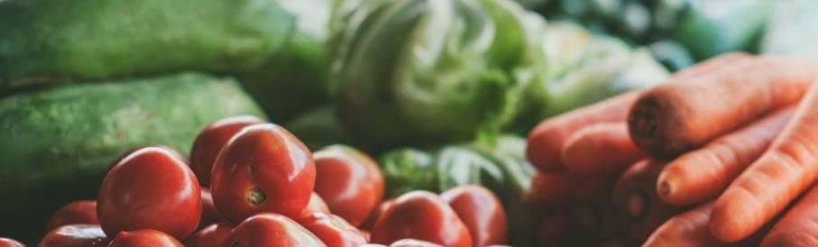 IBS och tarmfloran